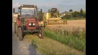 Żniwa 2008 - akcja pszenica