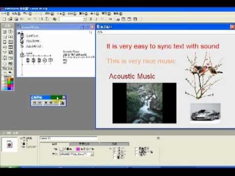 Authorware 7 Lesson 8 solution成品