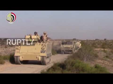 Egypt: Hitler's 'Mein Kampf' found amongst militant's equipment in the Sinai