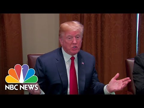 President Donald Trump: 'I'd Love To See A Shutdown' If Immigration Reform Not Passed | NBC News