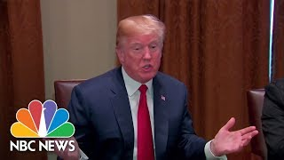 President Donald Trump: 'I'd Love To See A Shutdown' If Immigration Reform Not Passed   NBC News