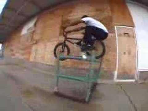 Edwin Delarosa Animal Bikes