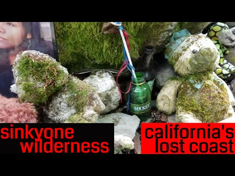 Sinkyone Wilderness on the Lost Coast of California