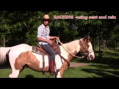 Basics of Riding by Adrienne Dymesich