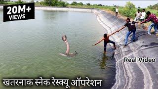 खतरनाक स्नेक रेस्क्यू ऑपरेशन, खेत तालाब में गिरे 2 जहरीले सापों को बाहर निकाला, देखिये पूरा वीडियो..