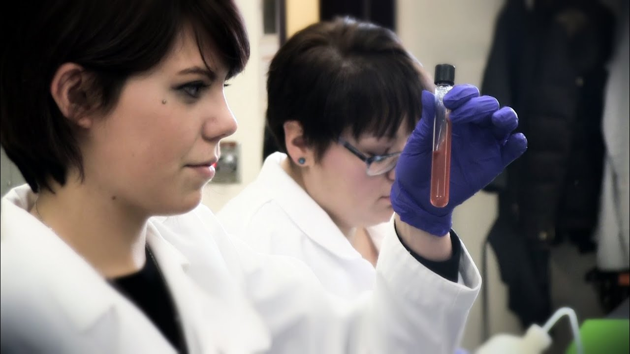 medical laboratory technician Students in the medical laboratory technician program learn about the immune system, blood cells and blood banking procedures in the clinical chemistry laboratory.