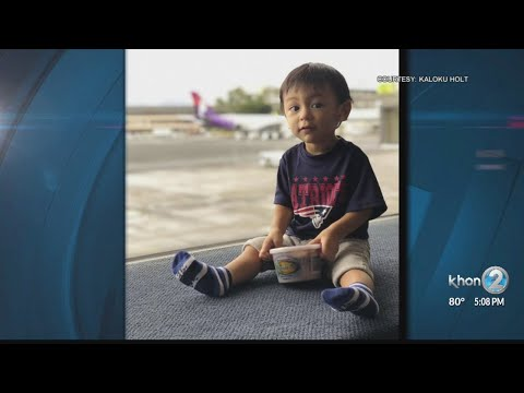 'Poi is baby food,' family argues to TSA in Honolulu
