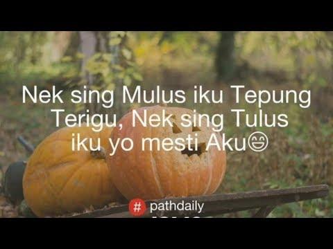 320+ Quote Pathdaily Jawa, Baper, Instagram, Galau Bijak, Lucu, Sedih, Rindu, Kocak