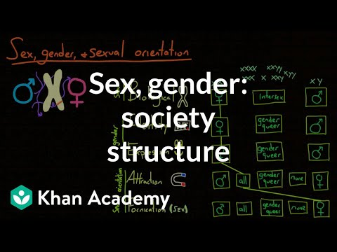 Demographic structure of society - sex, gender, and sexual orientation | MCAT | Khan Academy