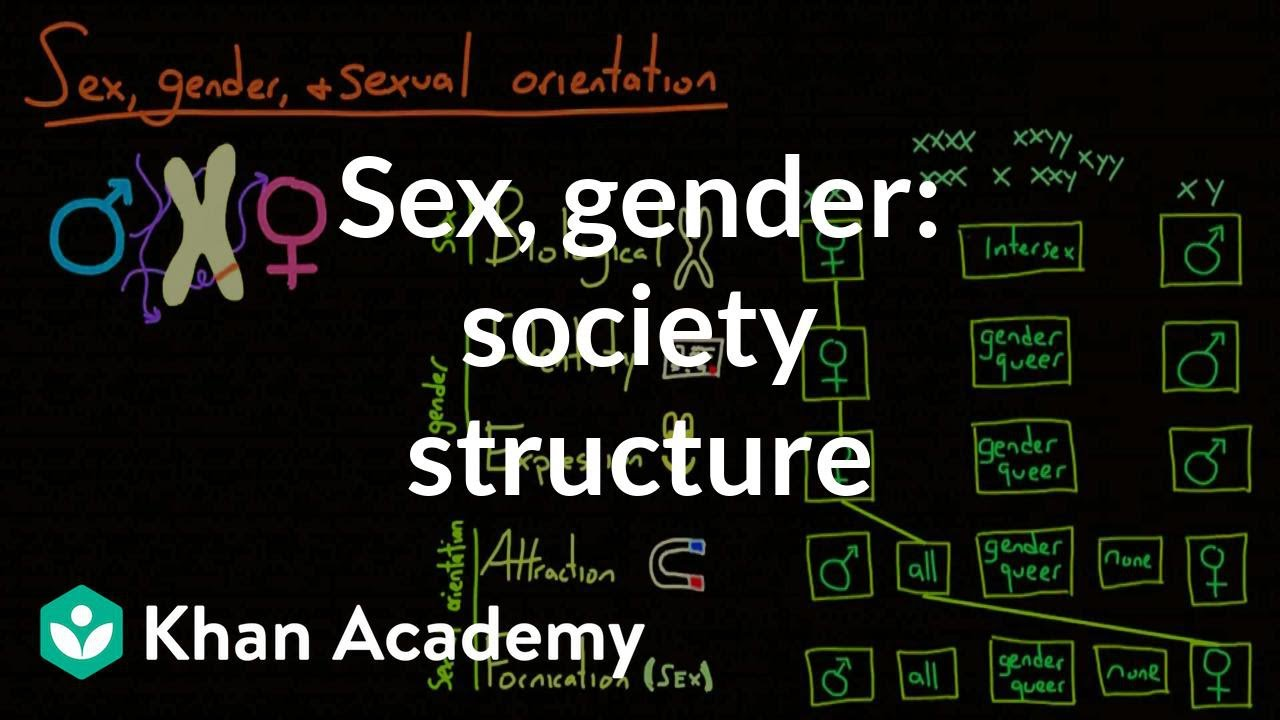 Demographic structure of society - sex, gender, and sexual orientation