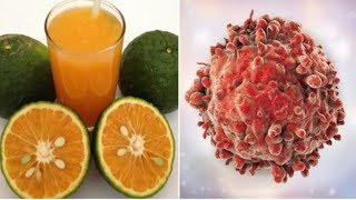 Nghiên cứu khoa học: Chính vitamin C đã hỗ trợ giúp cho tế bào u.n.g thư trở nên 'bất tử'