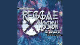 Megamix (Bonus Track)