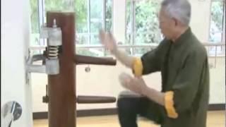 Tsui Shong Tin Wing Chun Kung Fu Madrid