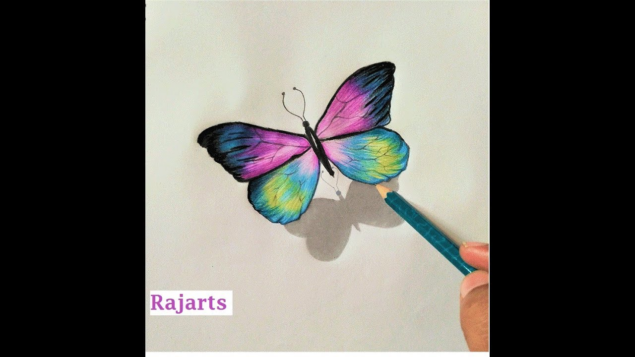 How To Draw Colourful Butterfly Amazing Drawing In 3d Youtube