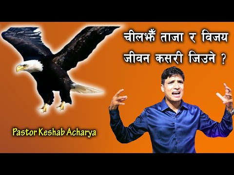 चील​झैँ ताजा र​ विज​य​ जीव​न​ कस​री जिउने? || How To Live Fresh And Victorious Life Like Eagle?
