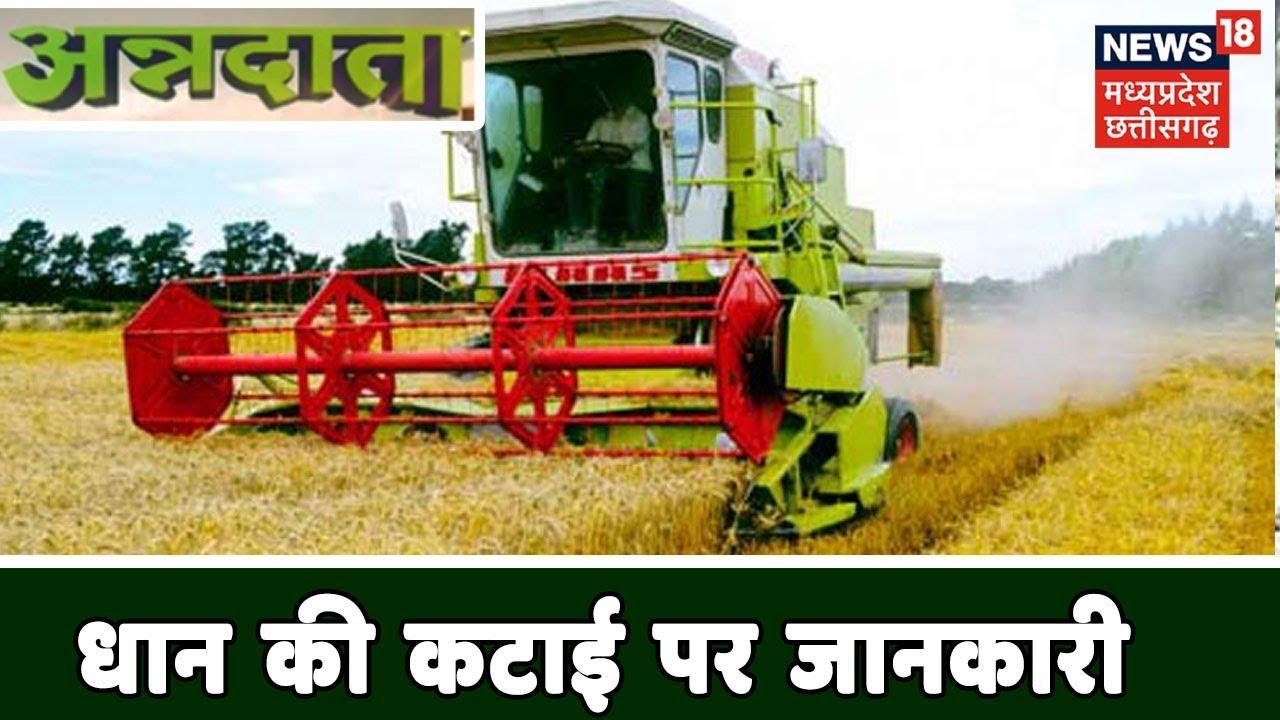 धान की कटाई पर होने वाली समस्याओं के समाधान पर जानकारी | Paddy Harvesting |  Annadata