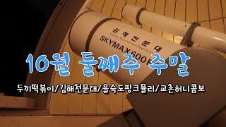 일상vlog19.부산가을소풍추천지/김해천문대/을숙도핑크…