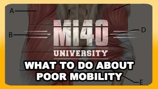 Muscle Mobility, Immobility, Muscle Range of Motion, Flexibility (BONUS UNLISTED VIDEO)