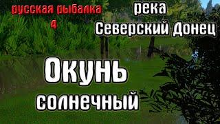 Русская рыбалка 4 рр4 rf4 река Северский донец Окунь солнечный