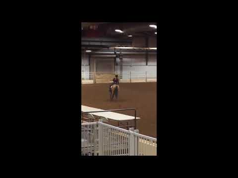 2017 AQHA Tulsa Holiday Classic Youth Reining