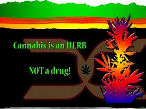 Tad's - Hard Drugs Version mp3