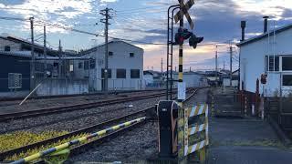 【2020.11.7】JR高崎駅 機関区 EF64 1053  DD51 895