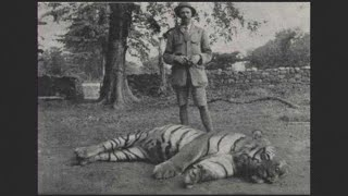 The Champawat Maneater by Jim Corbett. An audio reading of the story from The Maneaters of Kumaon