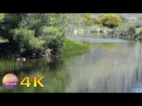 Gentle Larissos River - Calming Water Flowing - No Birds - For Meditation Or Deep Sleep - 4K Video