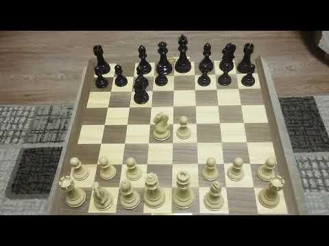 Шахматы. Шотландская партия