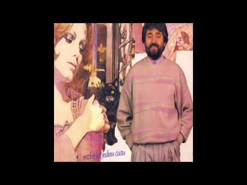 Radisa Urosevic - Razbij jos jednu casu - (Audio 1988) HD