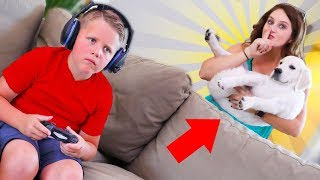 STEALING His New Puppy PRANK!