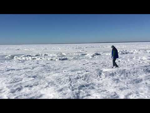 Whole ocean is frozen, INSANE!