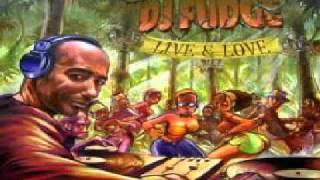 Dj Fudge  -  If I Had a Band