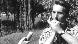 Albert Raisner - Western Ballade