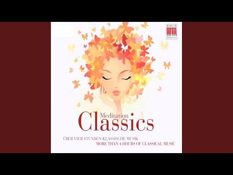 Serenade No. 2 in A Major Op. 16: V. Rondo - Allegro