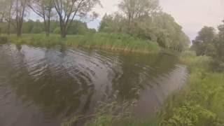 рыбалка Петергоф английский пруд