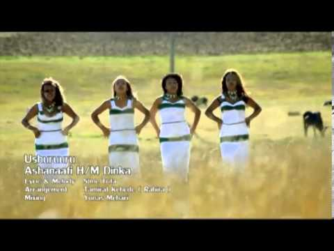 Download Ashenafi Dinka New Oromo Music Video Ushuruuru - 2013