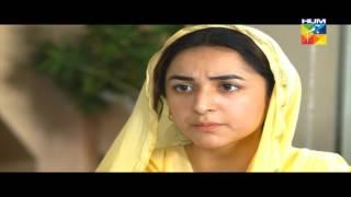 Zara Yaad Kar Episode 15 Full HD Hum TV Drama 21 June 2016