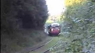 Diesellokomotivet VLTJ Ml12 med tog i Pipstorn Skov