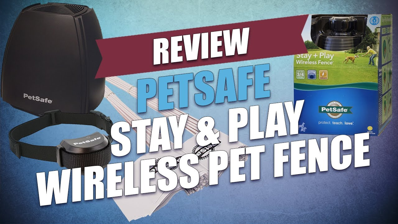 PetSafe Stay & Play Wireless Pet Fence Review - YouTube
