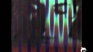 Richard Barbieri / Tim Bowness - a night in heaven