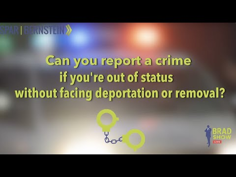 As An Undocumented Person, Can I Report A Crime Without Deportation? (Immigration Advice)