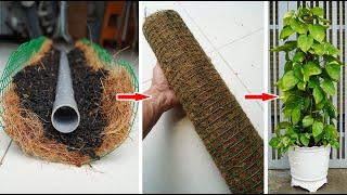 Đất, xơ dừa, ống nước–lọc không khí cho nhà bạn |Soil,coir,plumbing pipes–filter the air for y' home