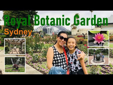 Royal Botanic Garden  -Sydney