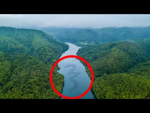 10 Terrifying Things Found In Rivers