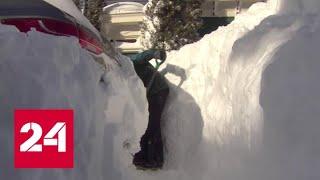 Смотреть видео Австралия горит и тонет, Канаду засыпает снегом - Россия 24 онлайн