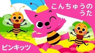 ちいさななかま | Bugs, Bugs, Bugs | こんちゅうのうた | ピンキッツ童謡