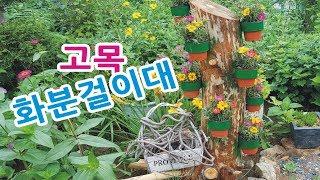 참사랑정원 고목나무에 예뿐 화분걸이 만들기