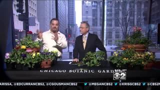Tim Pollak's Spring Gardening Tips