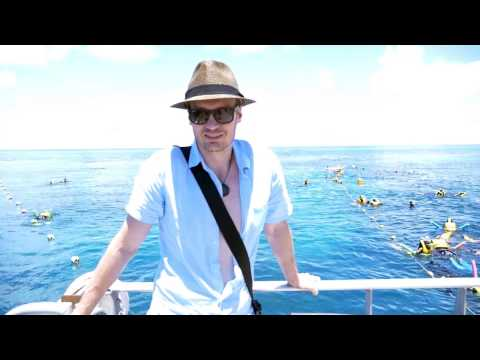 Happy New Year 2017  from The Great Barrier Reef Michael Sealey Hypnosis & Meditation channel